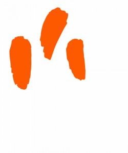 Oranssi on tunnusvärimme