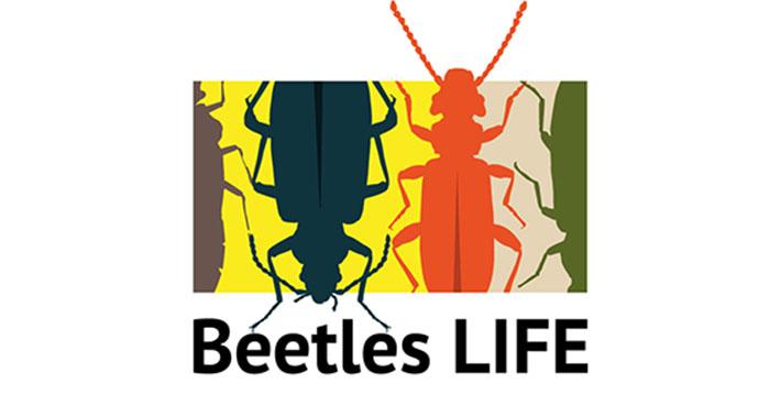 Beetles-life-hankkeen logo.