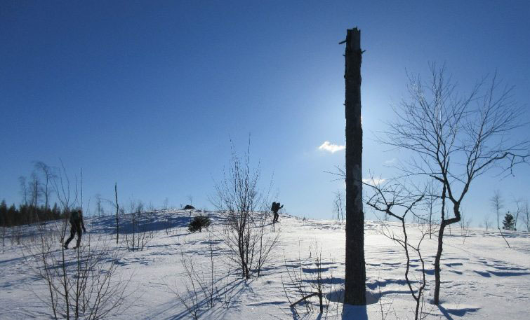 Wintery adventure