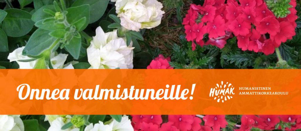 Valmistuneiden onnittelu, pääkuva, valkoisia ja punaisia kukkia, Humakin logo.