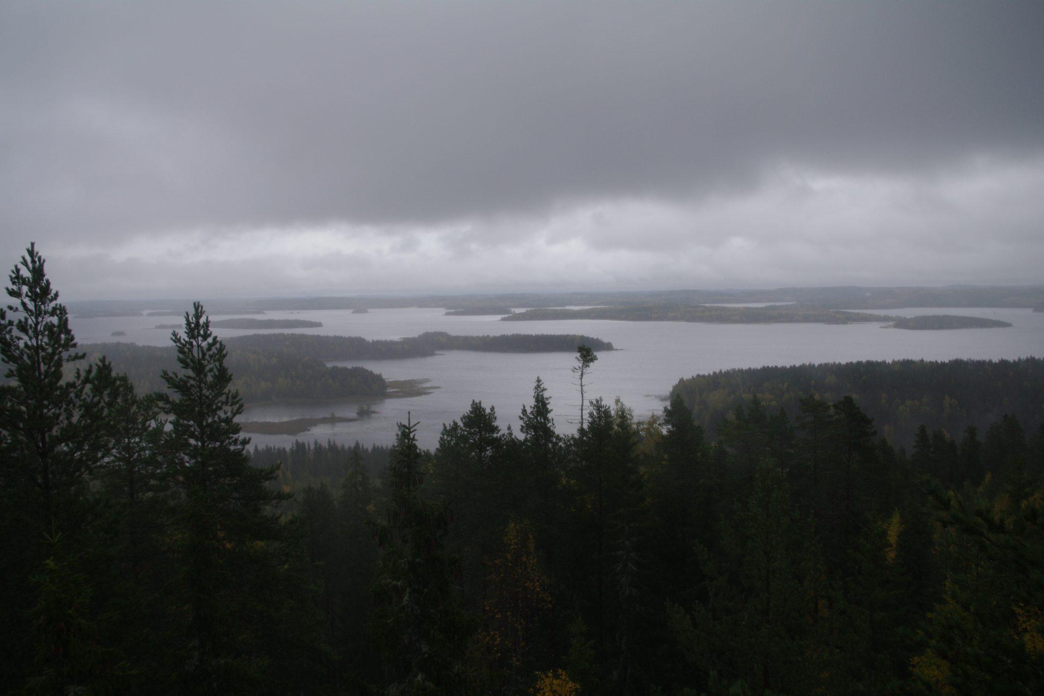 Suminen maisema metsästä ja järvestä Jyväskylän Stuven pisteeltä.