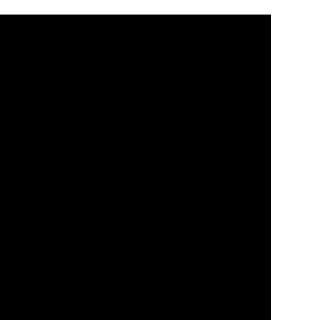 Neljä erilaista piirrettyä ilmapalloa