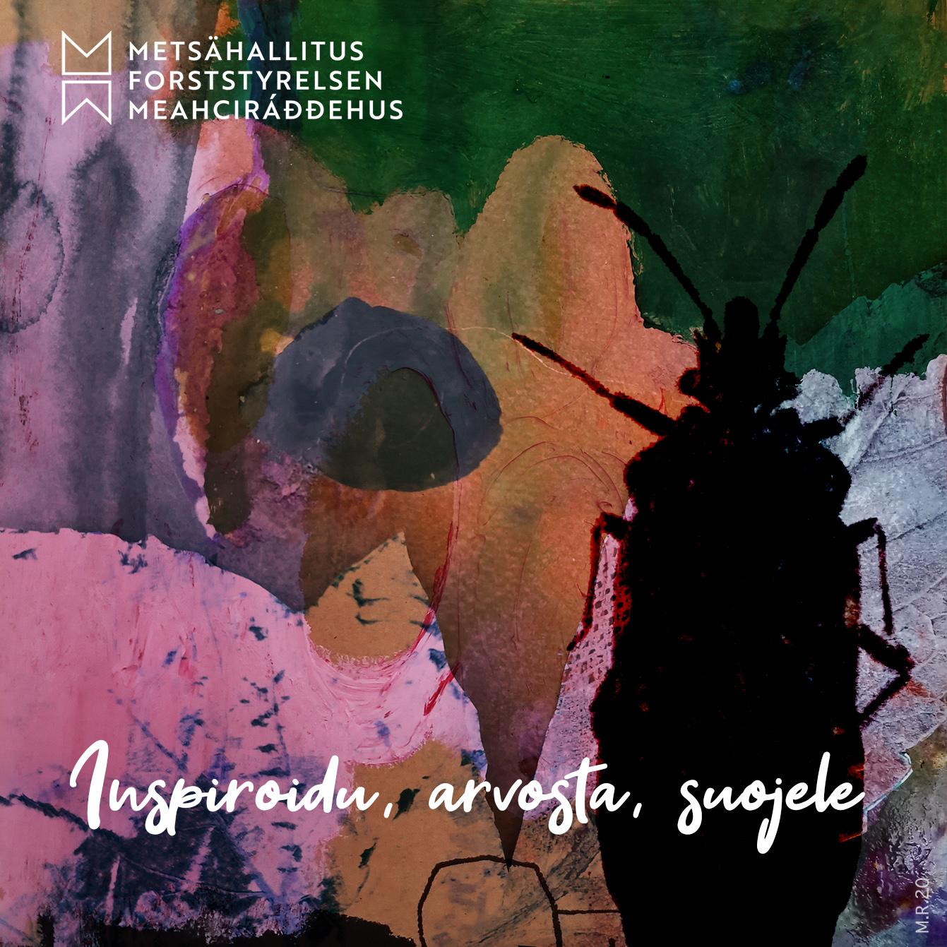 """""""Inspiroidu, arvosta, suojele"""" interaktiivisessa luontoelämyksessä – osa Beetles LIFE -suojeluhanketta"""