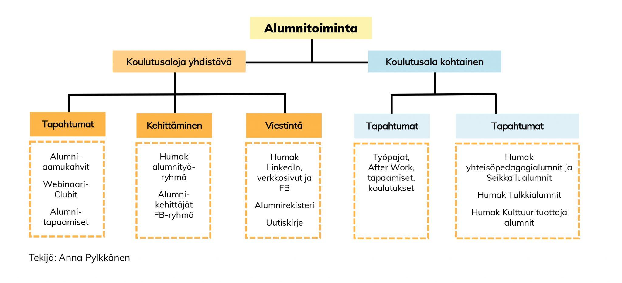 Alumnitoiminnan kaavio: Alumnitoiminta on koulutusaloja yhdistävää (tapahtumat, kehittäminen ja viestintä) sekä koulutusala kohtaista (tapahtumia).